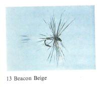 Beacon Beige2.jpeg