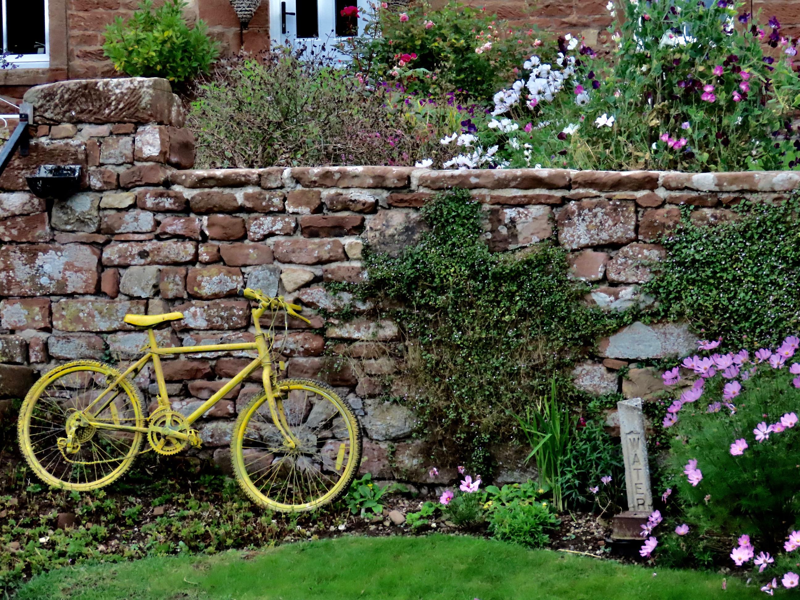 Bicycles3.jpg